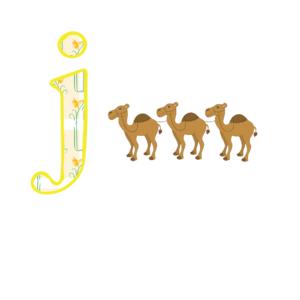 J Camels
